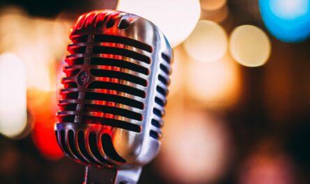 Mikrofon, který ke zpívání používal Karel Gott.
